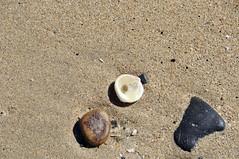 Sea shell, Sand & Stones (Mr Abri) Tags: heritage history silver women jewelry jewellery rings ear antiques bracelets oman muscat nizwa pendants muttrah abdullah  anklets omani blueribbonwinner   supershot   omania bej abigfave platinumphoto anawesomeshot       alabri