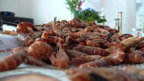 Krabben frisch vom Kutter