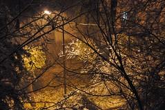 Definitely the end of autumn in Almaty, Kazakhstan, 9 November 2008 (Ivan S. Abrams) Tags: autumn winter arizona snow cold weather nikon asia seasons ivan soviet storms abrams kazakhstan scenes nikondigital kazakh steppes almaty astana smrgsbord tucsonarizona republics 12608 nazarbayev asiacentral onlythebestare ivansabrams trainplanepro nikond300 pimacountyarizona safyan arizonabar arizonaphotographers ivanabrams cochisecountyarizona gettyimagesandtheflickrcollection changeofseasonscentral transcaucasussoviet unionussrformer unionexsoviet ivansafyanabrams arizonalawyers statebarofarizona californialawyers copyrightivansafyanabrams2009allrightsreservedunauthorizeduseprohibitedbylawpropertyofivansafyanabrams unauthorizeduseconstitutestheft thisphotographwasmadebyivansafyanabramswhoretainsallrightstheretoc2009ivansafyanabrams abramsandmcdanielinternationallawandeconomicdiplomacy ivansabramsarizonaattorney ivansabramsbauniversityofpittsburghjduniversityofpittsburghllmuniversityofarizonainternationallawyer