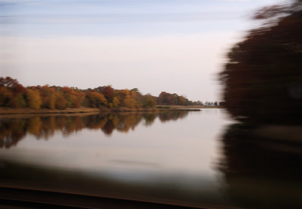 Fall reflections (from rushing train)