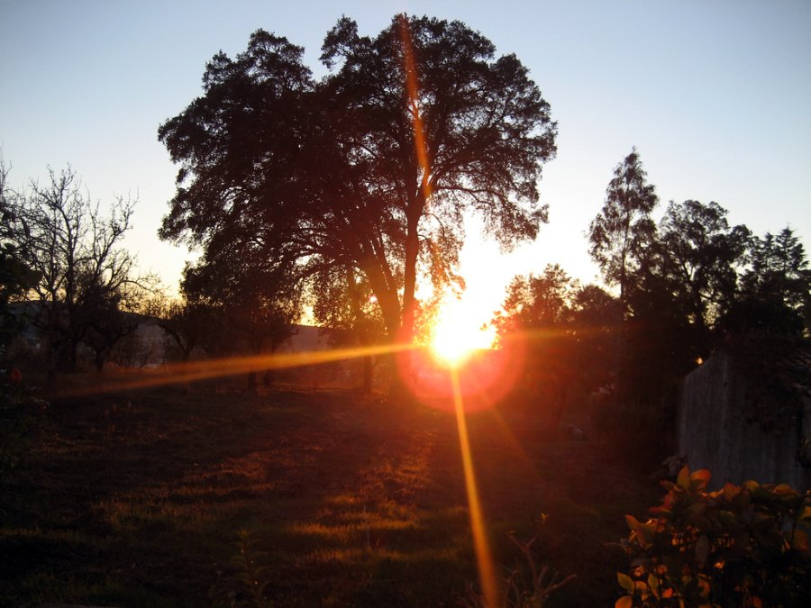 Sol de Outono