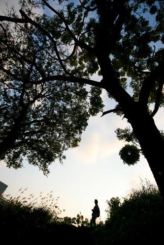 樂生療養院1130