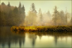rain on the river (jody9) Tags: oregon bravo foggy rainy astoria johndayriver infinestyle
