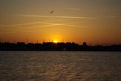 Gruissan - coucher de soleil (fabdebaz) Tags: soleil 11 paysage aude distillery gruissan etang aficionados k10d pentaxk10d francelandscapes justpentax mai2008