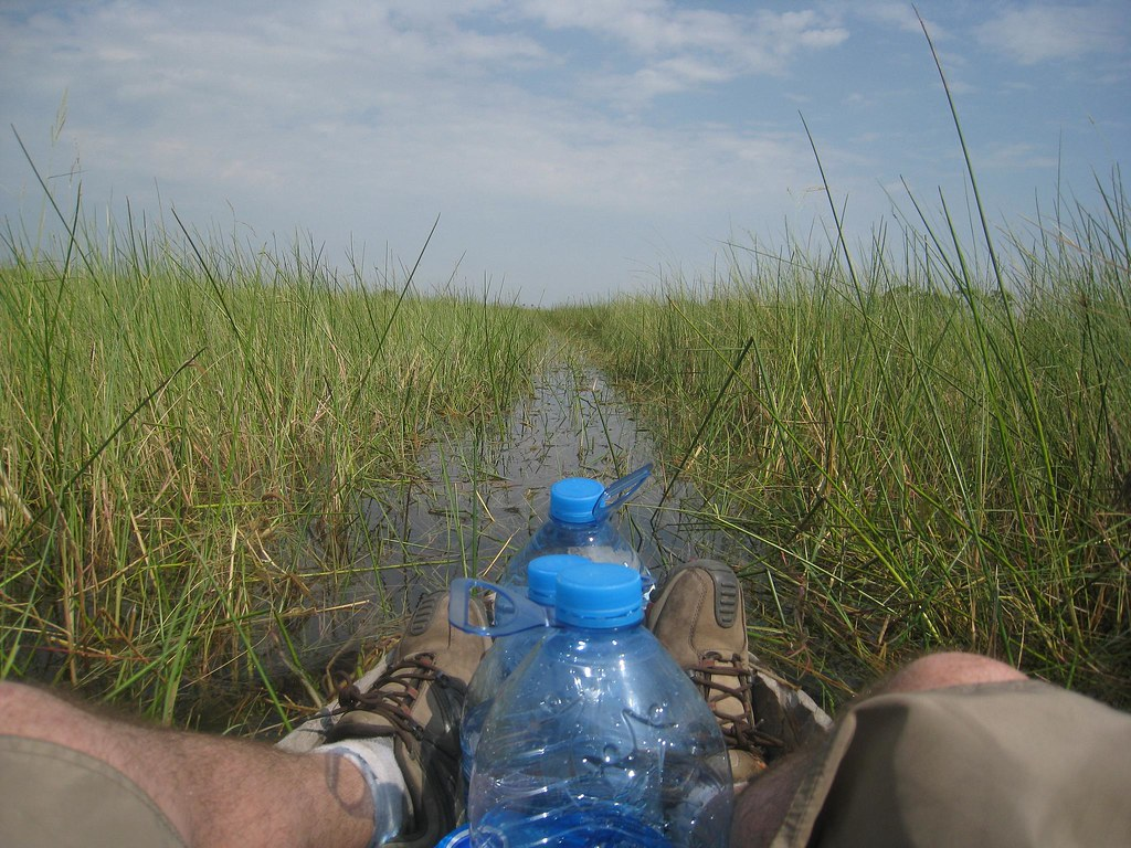 Entering the Okavango Delta by mokoro (traditional canoe).