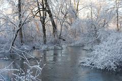 2008_12_13_2509 (amymengel) Tags: storm ice stillwater albanyny