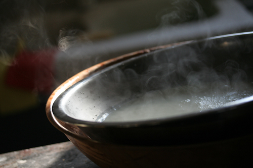 steamy cheese