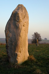 Stone 15b (treehouse1977) Tags: winter england male megalithic monument standing ancient standingstones december masculine stones pillar worldheritagesite avenue wiltshire nationaltrust prehistoric megaliths avebury stoneage neolithic stonecircle megalith stonecircles henge sarsen kennetavenue stone15b