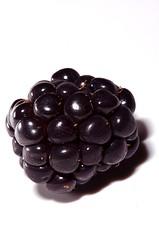 The Blackberry (redsunw) Tags: canada macro closeup fruit aperture blackberry flash nikkor cls 105mm d90 mwp 105mmf28gvrmicro nikoncls nikond90 nikkor105mmf28gvrmicro themacrogroup r1flash michaelwillsphotography