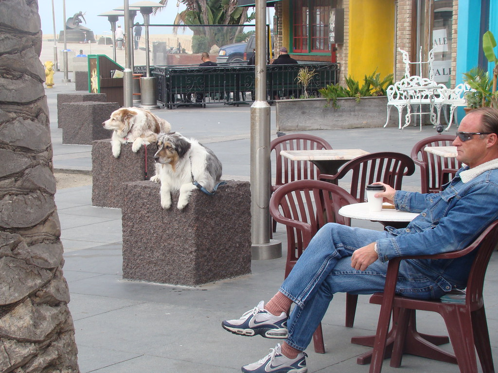 Dogs on Blocks, Hermosa Beach 2