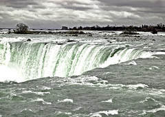 niagara (S Alex Maier) Tags: white ontario canada fall love water river happy waterfall live seagull gull gulls extreme steve happiness niagara falls cuyahoga grateful horseshoe gratitude maier liveinthemoment supershot ysplix magicunicornverybest