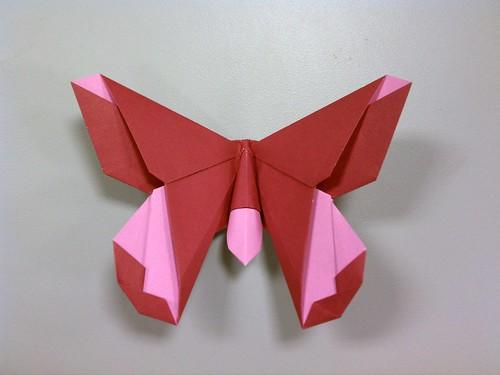 The Lillian (Butterfly)