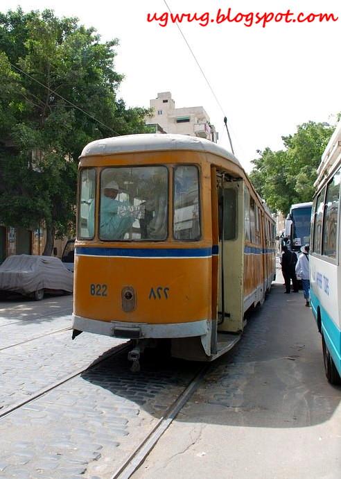 Squat Bus