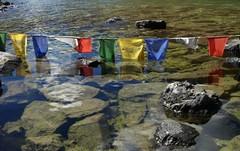2007-10 Bhutan 446 (blogmulo) Tags: travel lake trek lago dragon bhutan prayer buddhism flags viajes himalaya banderas 2007 druk budismo oracion chomolhari aplusphoto blogmulo