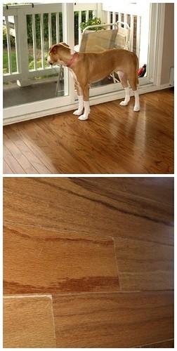 NOT FIXED Wood Floor