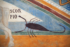 Scorpio, decoration, Sala di Giustizia, Rocca d'Angera, Varese, Italy (renzodionigi) Tags: castle castello middleages varese affreschi rocca lagomaggiore medioevo frescoes angera borromeo medievalart insubria
