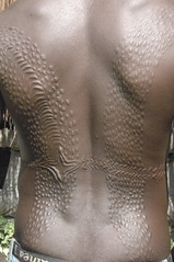 Scarification (mardeross) Tags: papuanewguinea huliwigmen