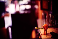 at the end of the world (moaan) Tags: leica corner 50mm dof bokeh small f10 shelf vacant noctilux 2008 vague leicam7 m7 kodak100uc leicanoctilux50mmf10 bokehwhores gettyimagesjapanq1 gettyimagesjapanq2