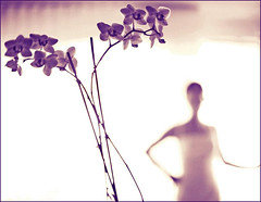 orchid and a bride (gosia janik) Tags: wedding woman orchid bride 5d f12 storczyk independentphoto