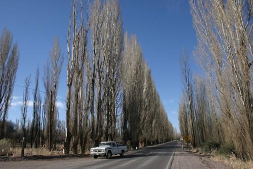 Uspallata, Argentina.
