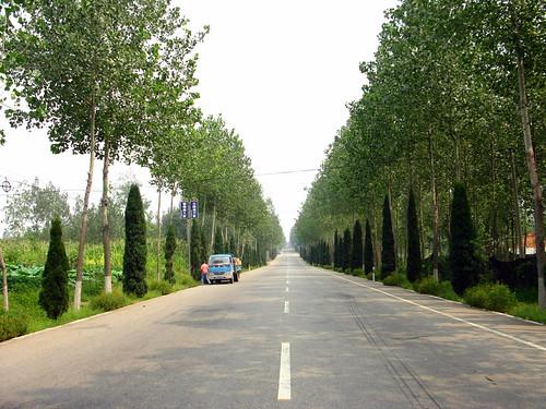 Rolling terrain near Xixia, Henan Province, China