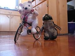 Pablito ayudando a nanuk a aprender a andar en bicicleta