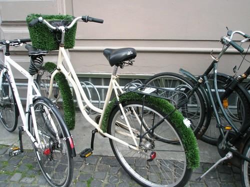 grassy bike.