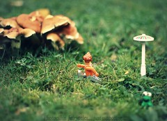 Lucy and the Demise of Narnia (photocillin) Tags: winter girl grass iceage forest mushrooms 50mm lucy lego bokeh running frog lsd lamppost madness narnia mad f18 raining frodo ef toadstools yateley ehbd hbwe