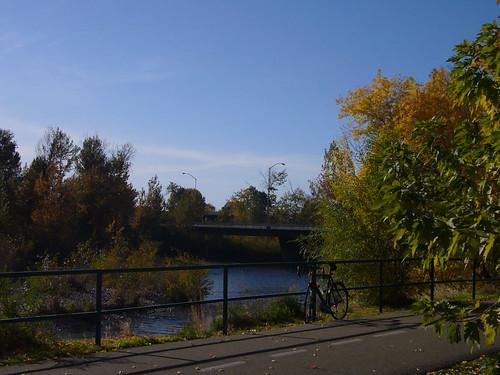 2008-Autumn-03