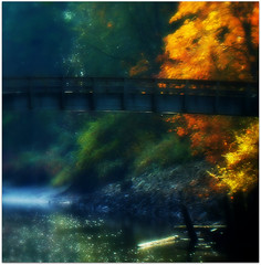 imagine . . . (Kelly's Pics (haydillygirl)) Tags: bridge tree nature river magic imagine fantasty