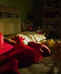 { The hope.. } (Shoshe { Aisha M. Al-Othman }) Tags: b red sun sunlight green girl happy hope bed nikon day heart room pillows pillow every return when radioactive 1855mm 1855 شمس 18 55 2008 shining shines في aisha الي يوم d60 على كل 1429 فيه غرفة الرياض الشمس نوم أمل صباح nikond60 shoshe الأمل shineing سرير ايكيا يعود ekea عايشه عائشة شوشي تشرق عيناي whenthesunshineing اشعةالشمس شمسساطعة الأمليعوداليفيكليومتشرقفيهالشمسعلىعيناي