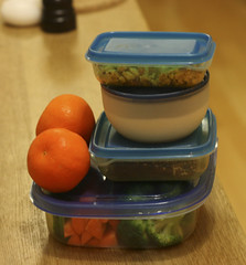 Veggie Travel Bento For One