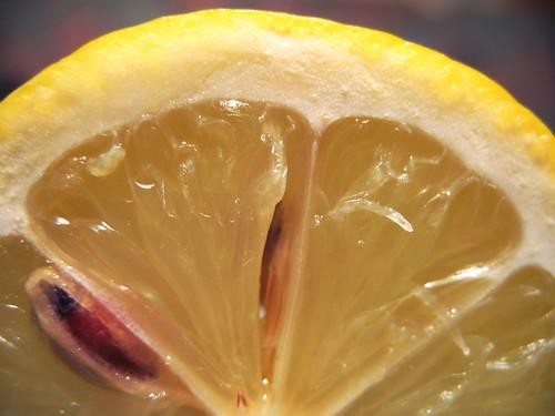 Lemon:  December 2, 2008