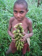 minta pinanka? ade (EDOWAY YUNUS FREE WEST PAPUA ARCHIVES DOCUMENT) Tags: son papua koteka