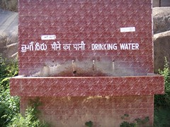 this does not apply to me (cats forrest) Tags: golconda drinkingwater