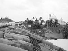 Archivo Tlacotalpan - Agosto 2008 (173)