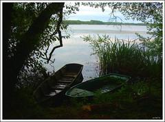 txalupak - barquitos (2005) (Ainara Garcia) Tags: 2005 lake france lago boat barcos barcas francia udaberria lakua landas frantzia txalupak etangblanc
