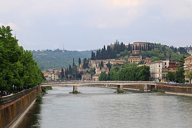 Verona7