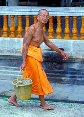 old monk (maiks72) Tags: old people man face asian thailand bangkok buddhist monk oldman elderly thai elder wise portaits grayhair whitehair seniorcitizen