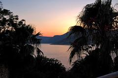 Sunset 2 (ant.ronald) Tags: sunset tree skyline turkey nikon palm kalkan d40 amazingcolor golddragon photofaceoffwinner pfogold