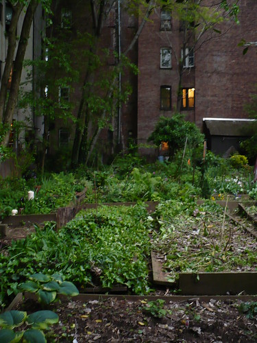 East Village community garden
