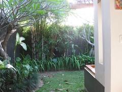 view from the loo (kevjblack) Tags: bali villa seminyak balibaik