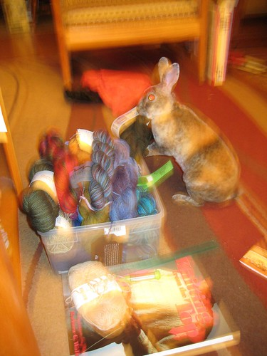 Mr Bun grabs the STR and makes a run for it