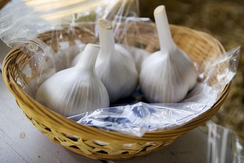 perfect garlic