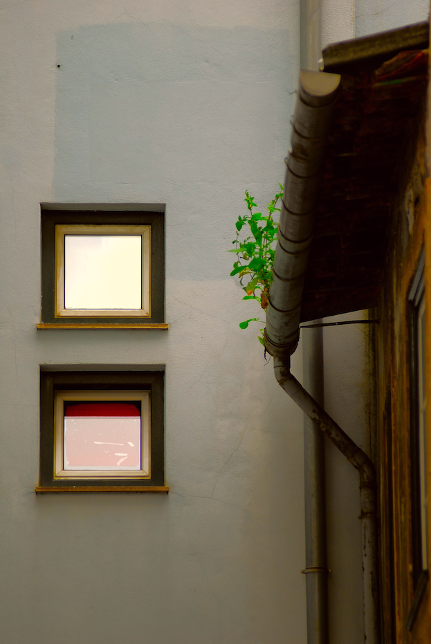 Small squared windows in Coimbra