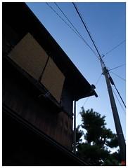 Blue Sky 080823 #06