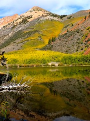 Fall Preview (outdoorPDK) Tags: fall reflections sierra aspens northlake