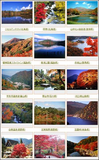 【日本賞楓季節】日本賞楓者必看~2008日本紅葉最前線