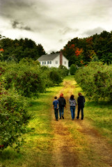 Verger (Bigpixal) Tags: dream orchard pomme verger