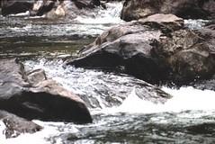 1999-08 Snoqualmie.jpg (7)